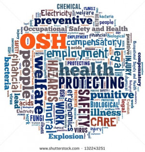 occupational health and safety explanation guide 2009