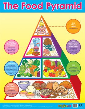 free canada food guide poster